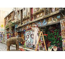 Graffiti Artists at Work in Hosier Lane Melbourne  Photographic Print