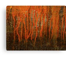 Rust 2 Canvas Print