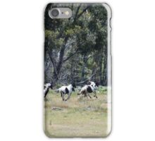 Oxley Brumbies iPhone Case/Skin