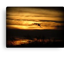 Sunset Sea Shark Canvas Print
