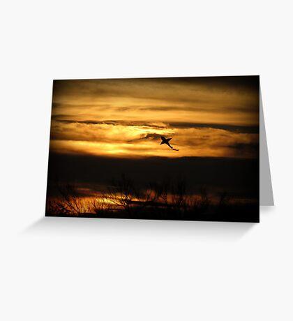 Sunset Sea Shark Greeting Card