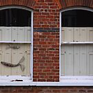 Wired Fish, Shutters, York, England by exvista