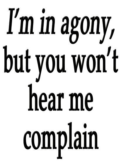 You won't hear me complain by Darren Stein