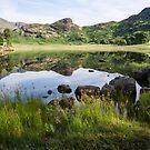 Blea Tarn by John Dunbar