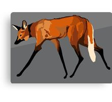 Maned wolf with gray background Canvas Print