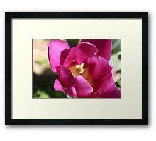 Floral inspiration Framed Print