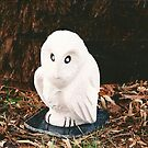 Hebel BooBook Owl by Redviolin