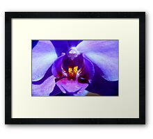 f)26.5) rewards Framed Print