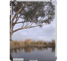 Dam! iPad Case/Skin