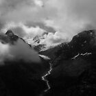 Swiss Alps  by Anthony Milnes