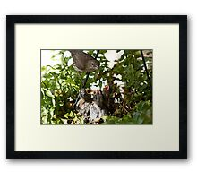 The New Mother Framed Print