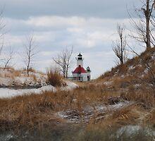 St Joseph North Pier Lighthouse - 46 by Debbie Mueller