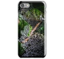 The Web iPhone Case/Skin