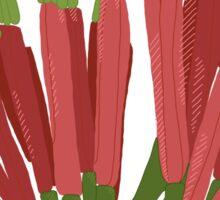 Amylotheca dictyophleba - Scrub Mistletoe Sticker