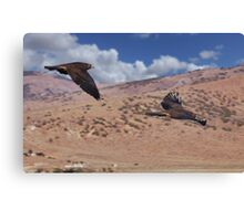 Hawks of Palomino Valley Canvas Print