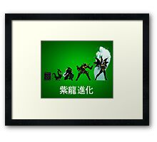 Shiryu Evolution Framed Print