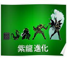 Shiryu Evolution Poster