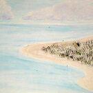 Ocracoke Marsh by Valerie Howell