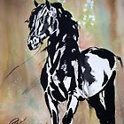 Friesian by Belinda Baynes