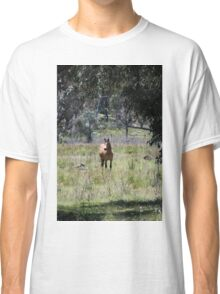 Brumby through the Trees Classic T-Shirt