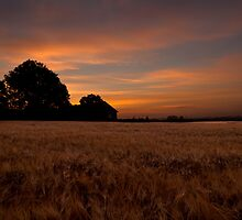 Sunrise in the Country by Oscar Karlsson