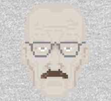 Walter White, Start of the fall by kscully