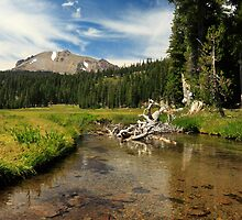 Mount Lassen And Kings Creek by James Eddy