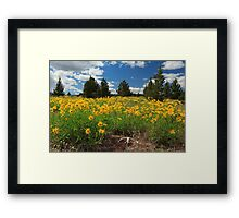 Wildflowers Junipers And Antlers Framed Print