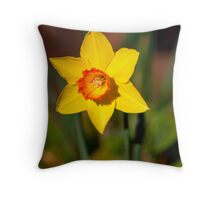 Sunshine on a Daffodil Throw Pillow