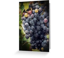 Ready for Harvest Greeting Card
