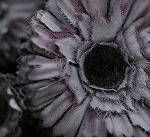 Cemetery flower mauve by NicoleCurtis