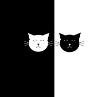 Black and White Cats by georgiasdesigns