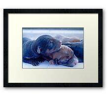 Just born puppies Framed Print