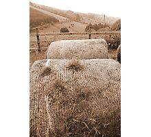 old round bales in Irish countryside Photographic Print