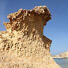 Desert wave by freshairbaloon
