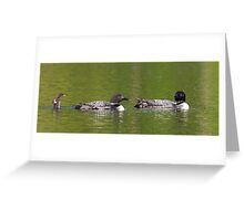 Welcome to the looniverse! Common Loons Greeting Card