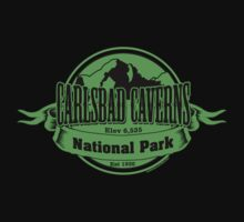 Carlsbad Caverns National Park, New Mexico Kids Tee