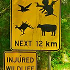 Aussie Devils, All Sorts :) by Penny Smith