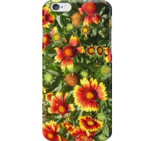 Orange Burst iPhone Case/Skin