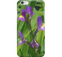 Dainty Purple & Yellow iPhone Case/Skin