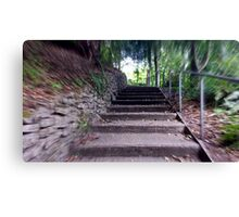 the steps Canvas Print