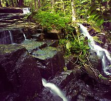Wilderness WaterFalls by Nazareth