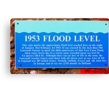 the flood Canvas Print
