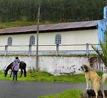 Life On El Altar In Ecuador by Al Bourassa