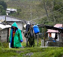 Milk Delivery In The Rain On El Altar by Al Bourassa