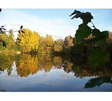 lake through the bush Photographic Print
