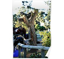 Utility Single Tree By croust Poster