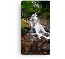 Mountain Showers Canvas Print