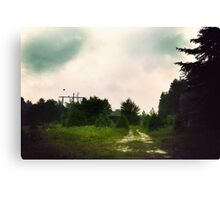 Stormin Out Canvas Print