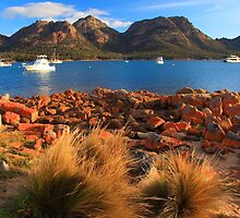 Coles Bay, Freycinet Peninsula, Tasmania by tim buckley | bodhiimages